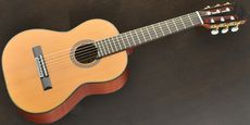 ARIA / A-20-48 Acoustic guitar Free Shipping! δ