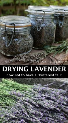 How to Dry Lavender garden herbs garden beds Lavender Uses, Lavender Crafts, Growing Lavender, Lavender Flowers, Flowers Garden, Dried Flowers, Garden Plants, Lavender Garden, Lavender Recipes