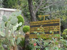 Placa no jardim da Antigua Parroquia de Indios, no entorno da Basílica de N Sra de Guadalupe,cidade do México. Foto : Cida Werneck