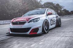 Cars - Peugeot 308 Racing Cup : la nouvelle lionne dévoreuse de vibreurs ! - http://lesvoitures.fr/peugeot-308-racing-cup-la-nouvelle-lionne-devoreuse-de-vibreurs/