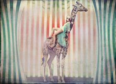 girl on giraffe