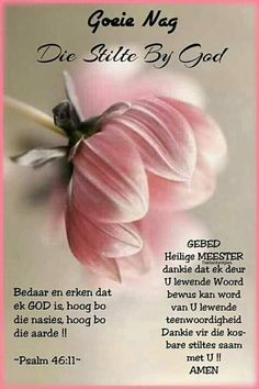 Well Said Quotes 505880970646358402 - Source by sonetteeastes Good Night Messages, Good Night Wishes, Day Wishes, Spanish Quotes Love, Lekker Dag, Christian Poems, Grief Poems, Afrikaanse Quotes, Goeie Nag