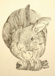 Part of a collaborative project, my fiance drew my rabbit and I filled it in :)