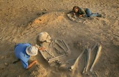 Real Pictures Of The Nephilim And More Insider Knowledge Ancient Aliens, Ancient History, Alien Proof, Giant Skeleton, First Humans, Mystery, Elephant, Earth, Pictures