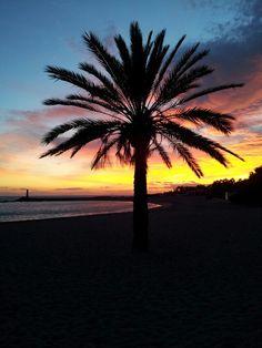 Marbella #MassimoFilippa
