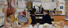 Education System, Secondary School, Will Smith, Artist, Painting, Middle School, Artists, Painting Art, Paintings