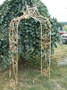 metal arbor | ... Iron Home and Garden Decor : Heavy European-Style Wrought Iron Arbor