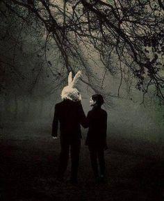 -neden o aptal tavşan kostümünü giyiyorsun? -seni daha iyi yiyebilmek için.