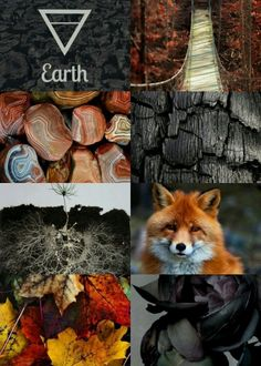 Ideas elements of nature art earth Witch Aesthetic, Aesthetic Collage, Character Aesthetic, Witchcraft, Magick, Wiccan, Elemental Powers, Elemental Magic, Male Witch