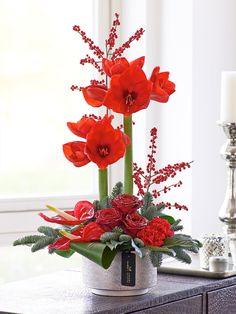 Luxury Festive Rose and Amaryllis Arrangement MyPerfectInterflorachristmas  Fleur De Noel, Composition Florale, Fleurs