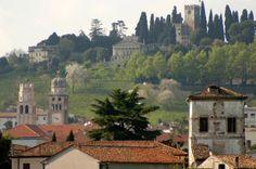 Sala dei Battuti del Duomo di Conegliano - Conegliano Italy Culture, Northern Italy, Outdoor Activities, Venice, Trip Advisor, Colorado, Tours, Mansions, House Styles