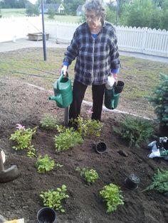 Puutarhanhoitoa