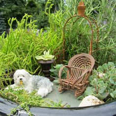 Flowers & Flours blog - Miniature Gardens #miniaturegarden #miniaturegardening