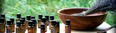 Essential oils are natural aromatic compounds found in the seeds, bark, stems, roots, flowers, and other parts of plants. They can be both beautifully and powerfully fragrant. If you have ever enjoyed the gift of a rose, a walk by a field of lavender, or the smell of fresh cut mint, you have experienced the aromatic qualities of essential oils.