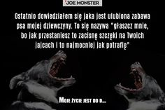 Moje życie jest do dupy... zwierzaki z piekła rodem! - Joe Monster
