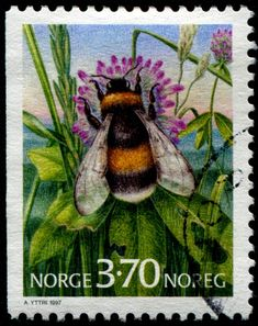 Bees - Honey Bee Stamps, Beekeeping, Apiculture - Stamp Community Forum - Page 5 Rare Stamps, Vintage Stamps, I Love Bees, Honey Bee Stamps, Bee Art, Bee Happy, Save The Bees, Bees Knees, Bee Keeping