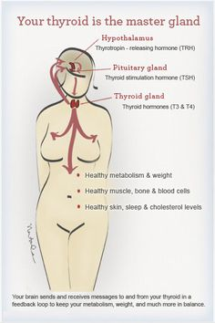 Hypothyroidism in Menopause - Women's Health Network