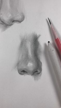 Practicing drawing parts of the face. As the nose is the most difficult part of the face to draw (in my opinion) so I'm gonna practice it more than anything else. Different noses, different angles, the more, the better! drawing videos How I draw the nose. Pencil Art Drawings, Realistic Drawings, Art Drawings Sketches, Graphite Drawings, Nose Drawing, Drawing Faces, Painting & Drawing, Faces To Draw, Back Drawing
