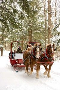 After a busy day cross country skiing, enjoy a scenic sleigh ride at Thunder Bay Resort: http://www.michigan.org/property/thunder-bay-resort/
