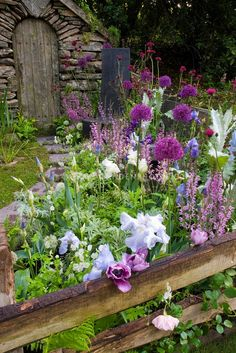 Lavender, purple, pink toned perennial garden, with fence. Cute country garden.