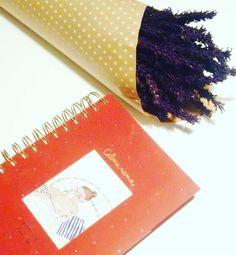 Estoy preparada para empezar el año nuevo!!! Este año soy #chicaBe no puede ser más bonica mi #agenda Ana @37elefantesyunacacharreria gracias por ese ratito tan chuliiii mi pimera salida de casa geeenial desde que estoy lesionada eres un amor nos vemos pronto!  P.d. a las creadoras de agendas: por favor meter unos días de diciembre que el #AnsiaViva nos puede  . .  #QueGanas #QuePase2017Prontito #365happydays #mismargaritadas