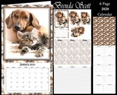 Loveable Cats and Dogs 2020 Calendar on Craftsuprint - View Now! Clydesdale Horses, Staffordshire Bull Terrier, Calendar Design, Note Paper, Chipmunks, Baby Elephant, Beautiful Horses, Blue Bird, Happy Valentines Day