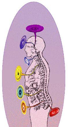 Cute Esoterische Psychologie Feinstoff Lichtsprache Grid Zeichnungs Programm Feinstoffreinigung Psychosomatische