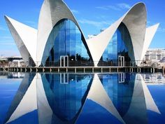 Valencia Aquarium. Valencia's arts and science complex is dominated by L'Oceanogràfic, the largest aquarium in Europe, with ten different underwater habitats. The complex also has Europe's largest planetarium, an IMAX theater, and an opera house. Photograph by Laura Dos Santos