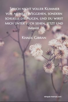 coaching & training more heart less head Khalil Gibran Quotes, Kahlil Gibran, S Quote, True Quotes, Funny Quotes, Cool Words, Wise Words, Tears In Heaven, German Quotes