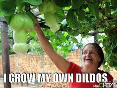Yes but can you grow dentures or at least put them?