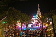 Cayman Christmas  www.passengerpicks.com