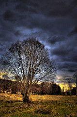 Atardece baño Pradorrey (Blancoperfecto2) Tags: Nubes RBOL Campo nublado destilería len Maragateria HDR pradera Astorga