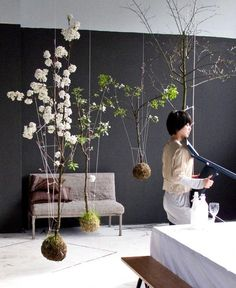 Hanging indoor garden via String Garden. Indoor plants have a way of making even the crappiest rooms look like the. String Garden, Hanging Plants, Indoor Plants, Hanging Gardens, Diy Hanging, Indoor Trees, Zen Gardens, Wall Gardens, Raised Gardens