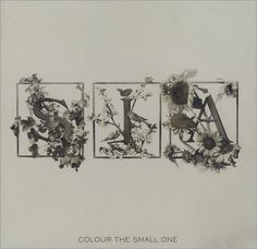 sia color the small one