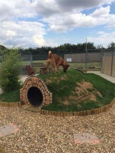 Why is using a dog house a good idea? Most people tend to have the misconception that dog houses are meant for only those dog owners who intend to keep their dogs outside. Dog Backyard, Backyard Ideas, Dog Playground, Playground Ideas, Backyard Playground, 15 Dogs, Cool Dog Houses, Amazing Dog Houses, Outside Dog Houses