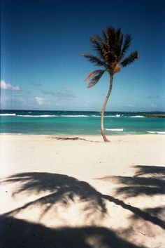 bahamas / by jamie beck
