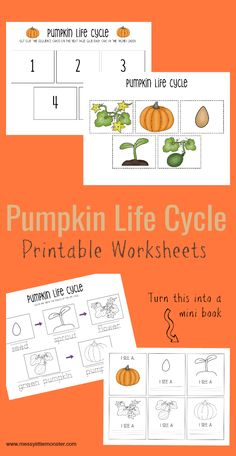 Use this set of pumpkin life cycle printable worksheets to teach young children where pumpkins come from. They would be great for a pumpkin project for preschoolers or Autumn activity for kids. Autumn Activities For Kids, Fall Preschool, Preschool Themes, Kids Learning Activities, Apple Life Cycle, Pumpkin Life Cycle, Sequencing Worksheets, Printable Worksheets, Life Cycle Craft