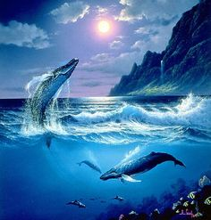 A Whale of a Time ~ Anthony Casay