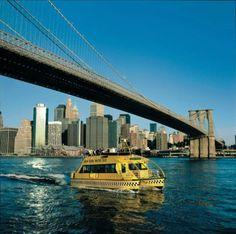 Original Statue of Liberty in ellis island new york   New York New York Tour plus Ticket to Statue of Liberty & Ellis Island