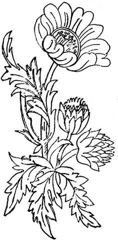 1886 Ingalls Floral Sprig2 | Flickr - Photo Sharing!