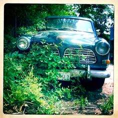 This is a car I used to own. Volvo Amazon122 wagon in metalflake green. #volvo #vintage #antique