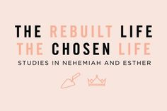 the rebuilt life Bible Study Plans, Choose Life, Gods Grace, Harvest, How To Plan, Archive