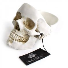 Skull desk tidy - Paperchase
