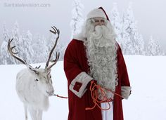 Santa Claus walking in the nature of Lapland with his reindeer