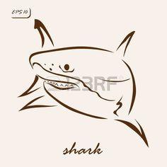 Shark S Eye Stock Photos Images. Royalty Free Shark S Eye Images ...