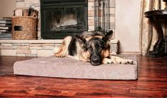 We've teamed up with the guys at BuddyRest to offer one lucky reader a chance to win a Comfort Deluxe Orthopedic dog bed worth $199!  If you feel guilty about leaving your dog at home, don't! With the BuddyRest they'll be kept cozy while you're gone.