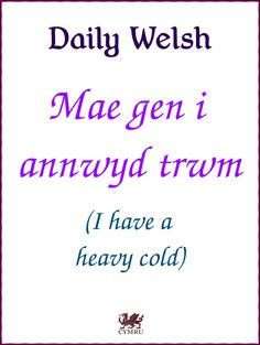 Welsh Phrases, Welsh Words, Welsh Translation, Wales Language, Learn Welsh, British Memes, I Gen, Cymru, Always Learning