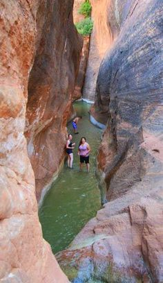 Red Reef Trail | in St. George, UT a popular family hike that leads you to a water hole.
