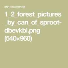 1_2_forest_pictures_by_can_of_sproot-dbevkbl.png (540×960)