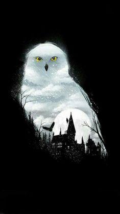Magia Harry Potter, Arte Do Harry Potter, Harry Potter Painting, Harry Potter Poster, Harry Potter Magic, Harry Potter Artwork, Theme Harry Potter, Harry Potter Drawings, Harry Potter Tumblr